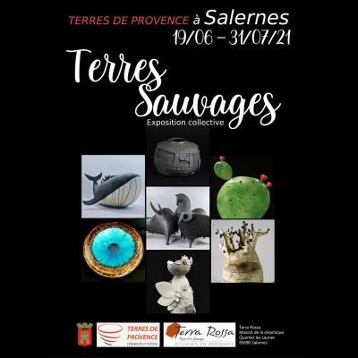 Affiche terres sauvages web
